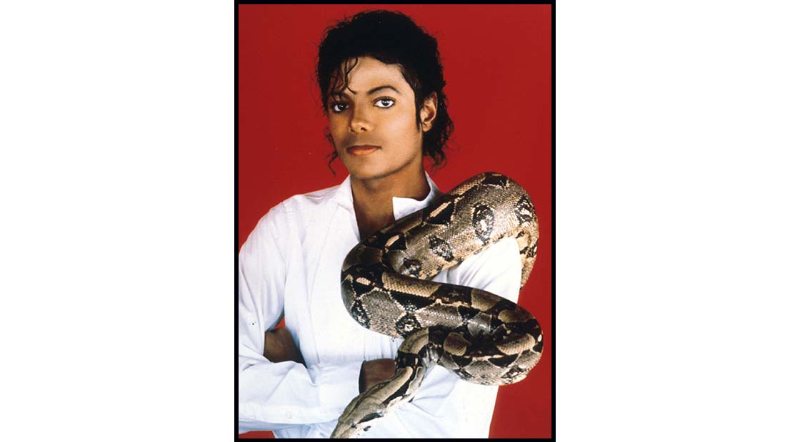 Michael Jackson portrait with a snake