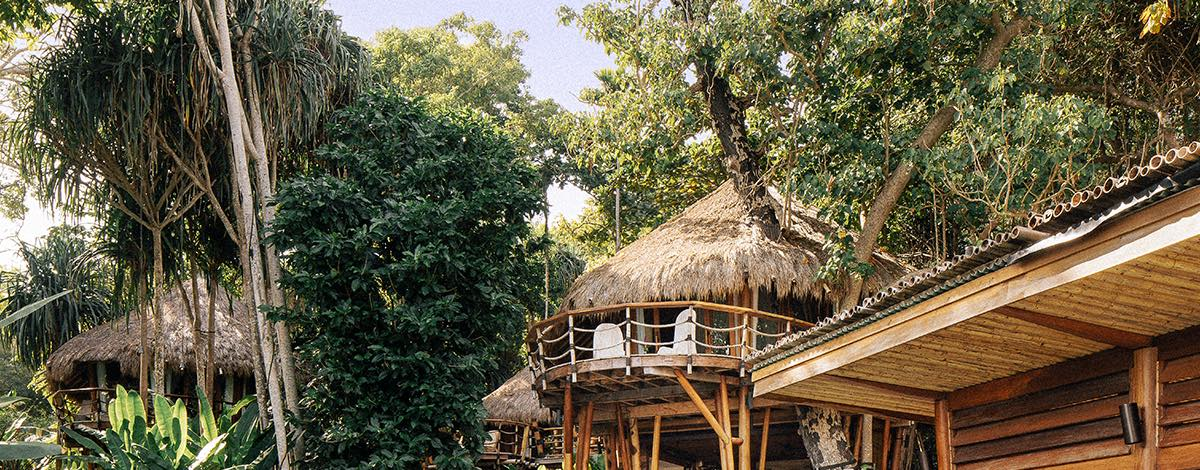 A thatched treehouse room in palm trees above a waterfall tiled pool